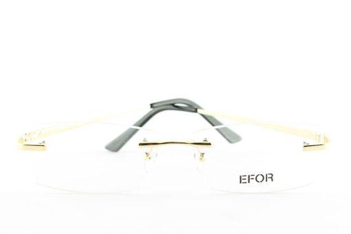Efor-8029-z